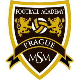 logo msm football academy